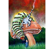 Smoking Caterpillar Photographic Print
