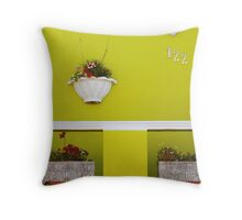 Exterior decorating Throw Pillow