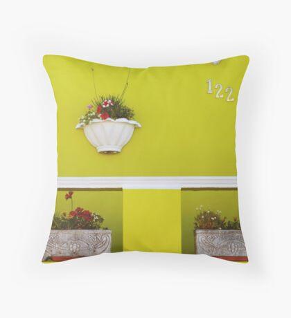 Exterior decorating Throw Pillow
