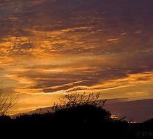 Norfolk Sunset by Cyrusdvirus