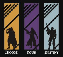 Choose Your Destiny - Hunter/Warlock/Titan by TheMDesign