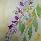 Wisteria by Marita McVeigh