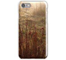 Photograph 'Dawn Web' Cornwall sunrise iPhone Case/Skin