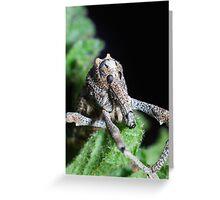 Pine Weevil Posing Greeting Card