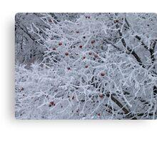 Frost bitten Canvas Print