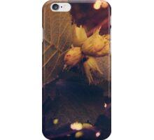 Hazelnuts iPhone Case/Skin
