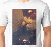 Hazelnuts Unisex T-Shirt