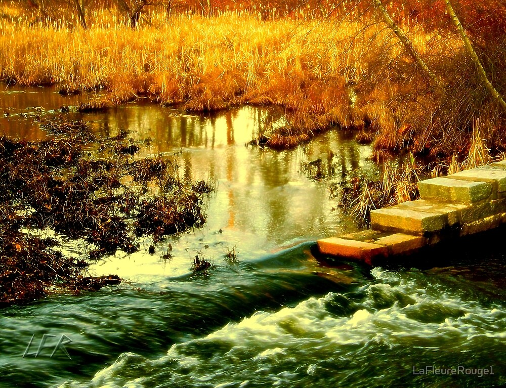 Flooded Wetlands by LaFleureRouge1