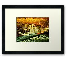 Flooded Wetlands Framed Print