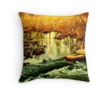 Flooded Wetlands Throw Pillow