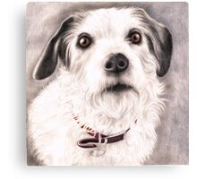 Paddy the Great Canvas Print