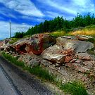 ALONG THE CANADIAN SHIELD - HDR by Larry Trupp