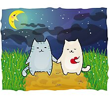 Cats under the moon Photographic Print