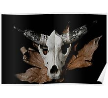 Cow Skull in duo tone 2 Poster