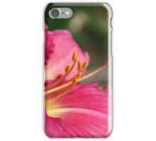 DL iPhone Case/Skin