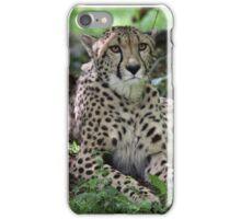 Tosca iPhone Case/Skin