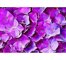 Fantasy Flowers Photographic Print