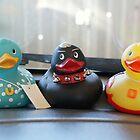 Dashbord Ducks. by CarrieCollins