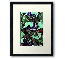 Abstracted Butterflies in Fauvist Colors #3  Framed Print