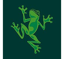 Frogs: Tree Frog Photographic Print