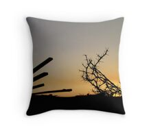 Thorn without a rose Throw Pillow