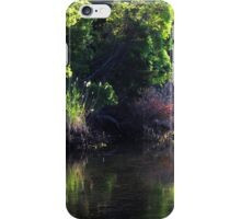 Sunny Evening at Sunken Meadow iPhone Case/Skin