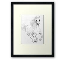 Running Arabian Horse Pencil Drawing Framed Print