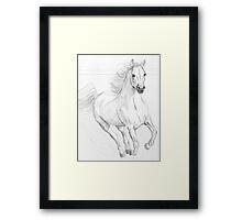 Running Arabian Horse Pencil Drawing Framed Print
