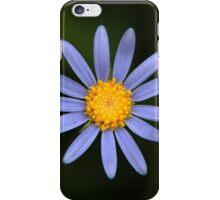 Felicia Amelloides (Blue Marguerite Daisy) iPhone Case/Skin