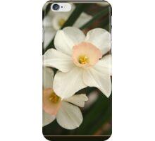Small Daffodills in the Underbrush iPhone Case/Skin