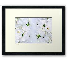 Romantic Jasmine Bouquet Framed Print
