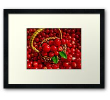 Cowberries Framed Print