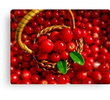 Cowberries Canvas Print