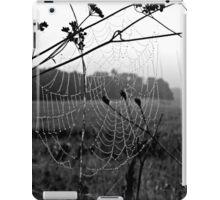 Mist Caught On Web iPad Case/Skin