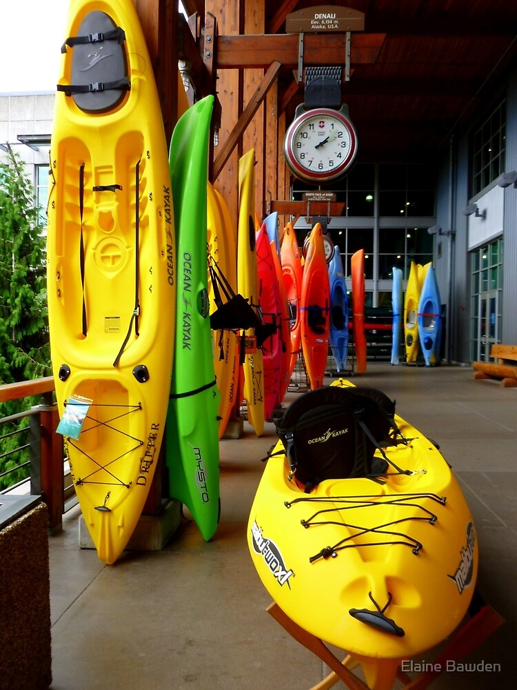 A RAINBOW OF KAYAKS by Elaine Bawden