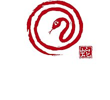Chinese Galligraphic Snake as Symbol of Year 2013 Photographic Print