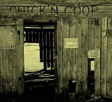 A Day At The Farm : Chick'n Coop by artisandelimage