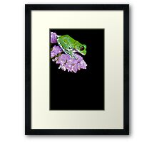 Peacock frog on pink flower Framed Print