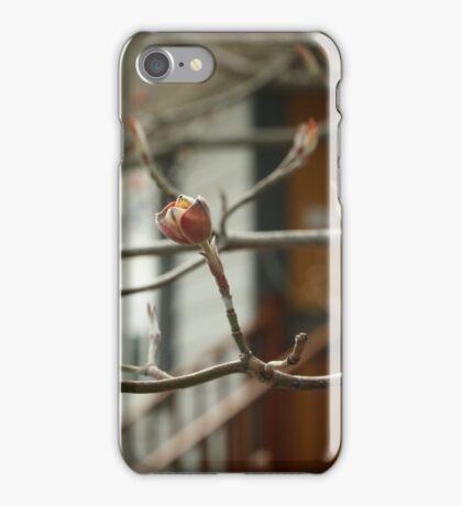 Spring Buds iPhone Case/Skin