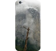 Flurries on the Rocks iPhone Case/Skin