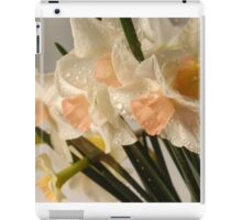 Dewy Small Daffodils with Peach Centers iPad Case/Skin