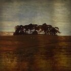 The Land by Simone Riley