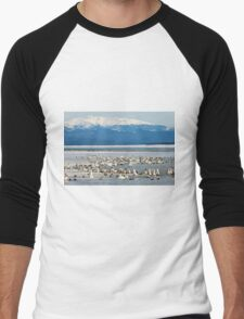 Migratory waterfowl gathers at Swan Haven, Marsh Lake, Yukon Men's Baseball ¾ T-Shirt