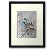 A Pair of Jays Framed Print