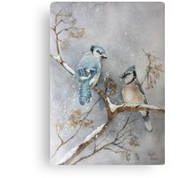 A Pair of Jays Canvas Print