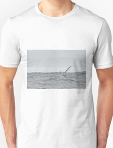 Albatross T-Shirt