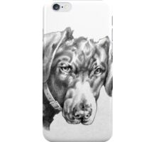 "Black Labrador - ""You're Kidding!"" iPhone Case/Skin"