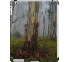 Rainforest Panorama - Barrington Tops NSW - The HDR Experience iPad Case/Skin