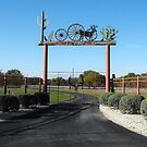 Fancy Gate in the Texas Hill Country by Susan Russell