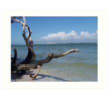 Bowman Beach, Sanibel Island Art Print